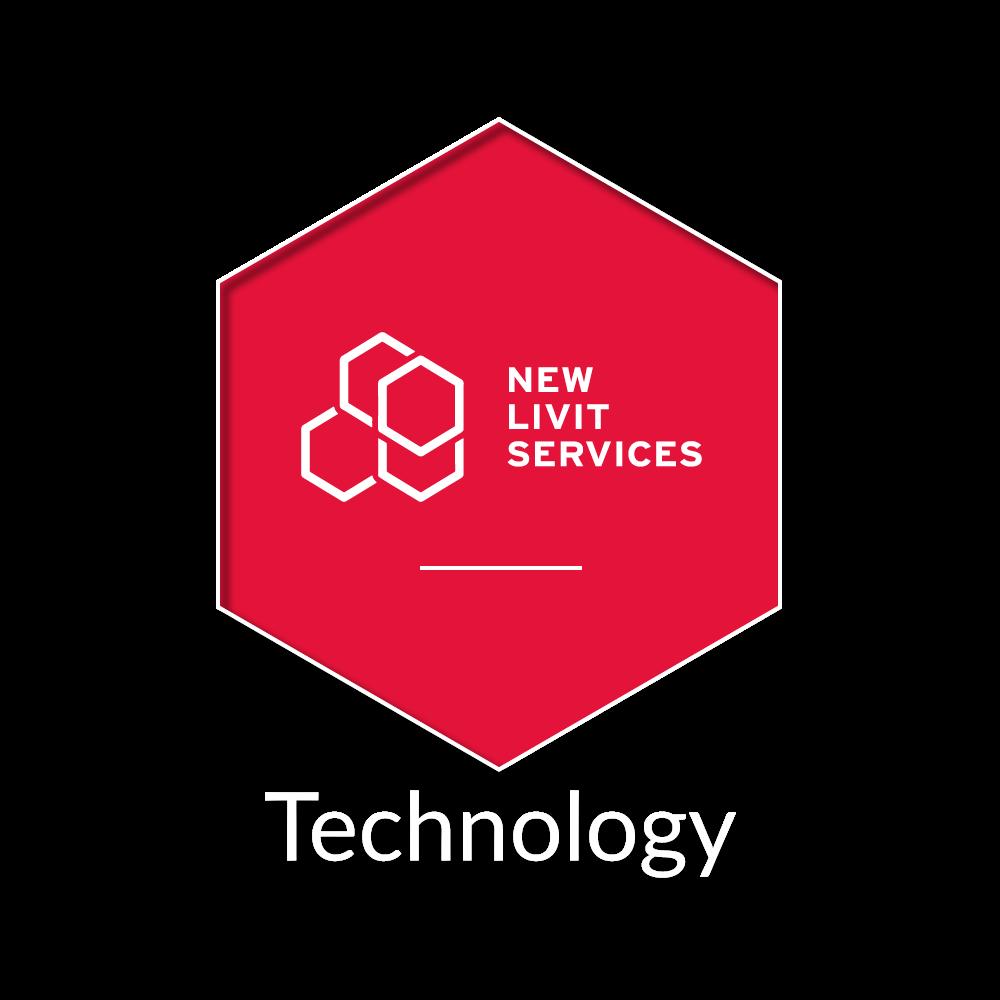 GruppoNew New Livit Services informatica Milano Cusago